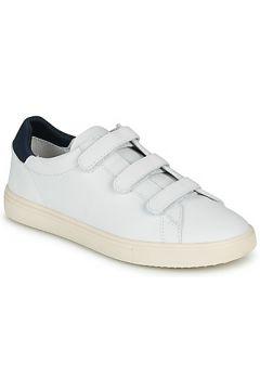 Chaussures Claé BRADLEY VELCRO(115605015)