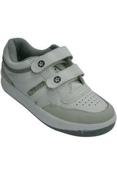 Chaussures Paredes Sports velcro classiques en blan(127926952)