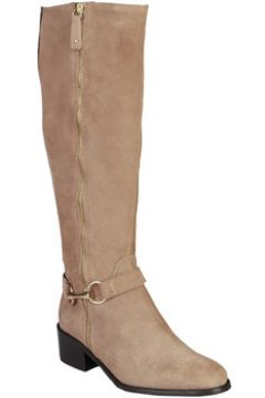 Bottes Pierre Cardin 4105215 TAUPE(115549582)