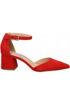 Chaussures escarpins Steve Madden MORTINA SUEDE(115565361)