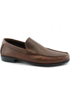 Chaussures Melluso MEL-E19-U24809-BR(115586611)