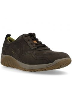 Chaussures Hush puppies 669990 Zapatos Con Cordones de Hombre(127929379)