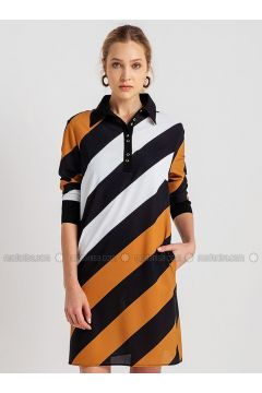 Mustard - Stripe - Point Collar - Dresses - NG Style(110341242)