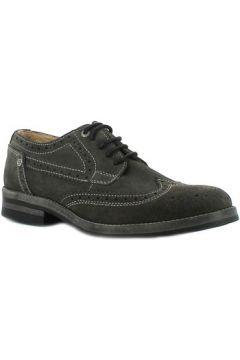 Chaussures Wrangler Grigi Stone Brogue(115439106)