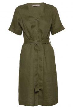 Dress Short Sleeve Kleid Knielang Grün NOA NOA(114164378)