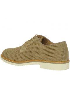 Chaussures Igi co 7677500(115594291)