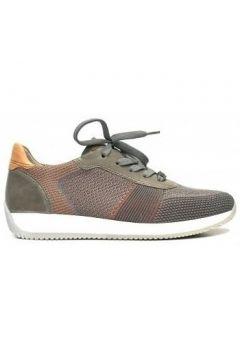 Chaussures Ara Basket Lif f4 36001(115428306)