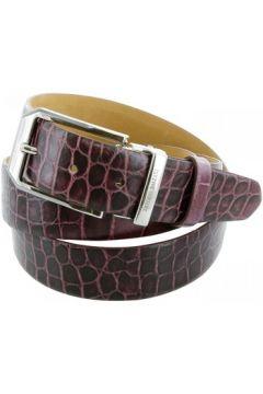 Ceinture Emporio Balzani ceinture cuir croco violet(115424201)