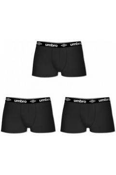 Boxers Umbro Lot de 3 Boxers coton uni homme(127935281)