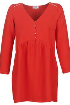 Robe Betty London LADY(115545857)