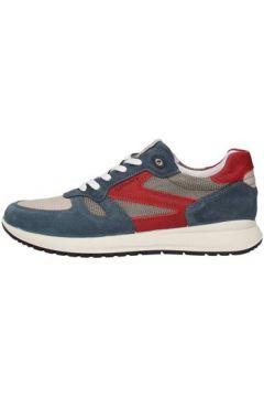 Chaussures Igi co 1120211(115594701)