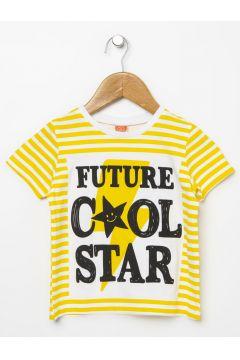 Koton T-Shirt(113977975)