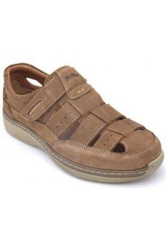 Sandales Ara 11-16205(115500882)