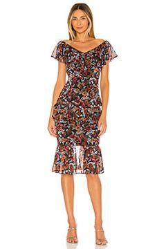 Платье миди tina - MAJORELLE(115058708)