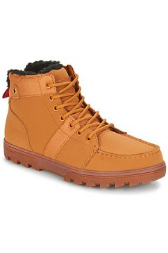 Boots DC Shoes WOODLAND M BOOT WEA(115394840)