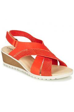 Sandales Damart MAYLO(115630877)