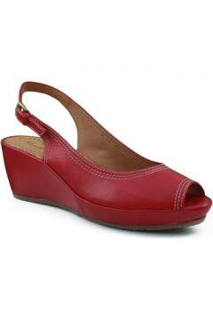 Sandales Montesinos coin chaussure avec confortable et anatomique(115448719)