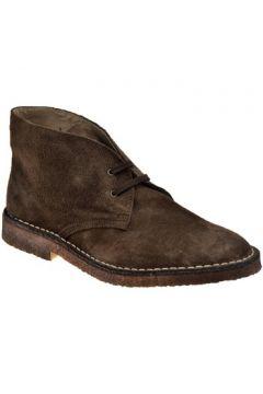 Boots Koloski Desert Casual montantes(115496184)