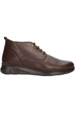 Boots 24 Hrs 10731(101755692)