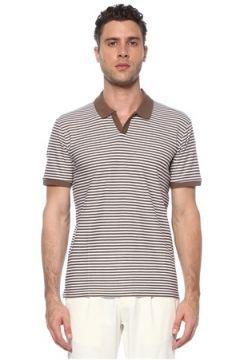 Network Erkek Slim Fit Vizon Beyaz Polo Yaka Çizgili T-shirt L EU(117771749)