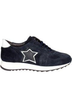Chaussures Pregunta PAH02 001(127911282)