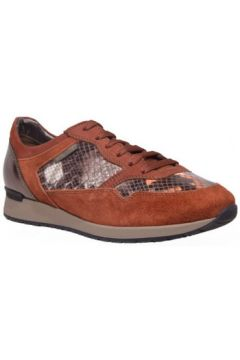 Chaussures Mephisto ninia(115500969)