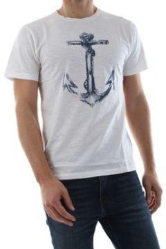 T-shirt Bomboogie TM5623 T JSSG(115629750)