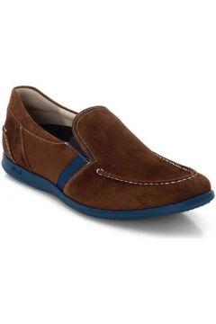 Chaussures Lloyd Clemente(115507588)