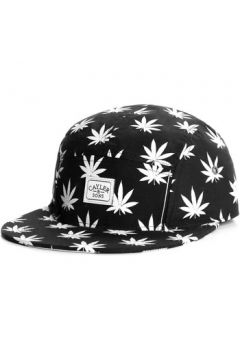 Casquette Cayler Sons Casquette 5 panel Cayler and Sons Budz N stripes(115395413)