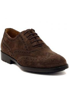 Chaussures Marco Ferretti NEWPORT BROWN(127919796)
