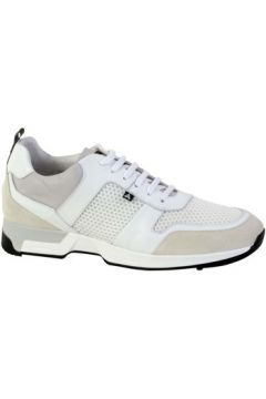 Chaussures Azzaro Basket ROSARIO(127943297)