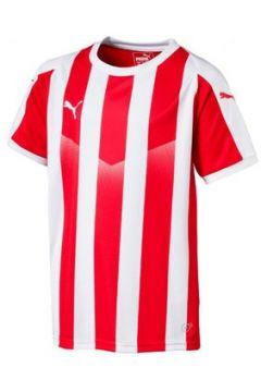T-shirt enfant Puma Maillot rayé junior Liga(115552572)