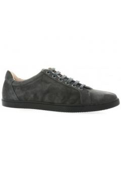 Chaussures Exit Baskets cuir velours(127909168)
