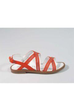 Sandales Dimonte 377(115478612)