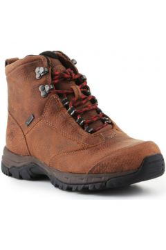 Chaussures Ariat Berwick Lace Gtx Insulated 10016229(127914983)