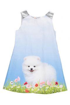Kleid Hund Paper(113612054)