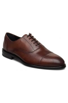 Lathan Shoes Business Laced Shoes Braun TIGER OF SWEDEN(114162581)