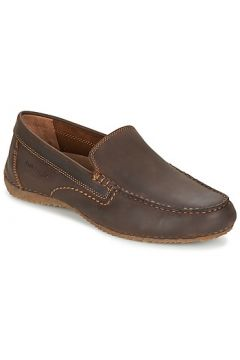 Chaussures Hush puppies RIBAN(115386779)
