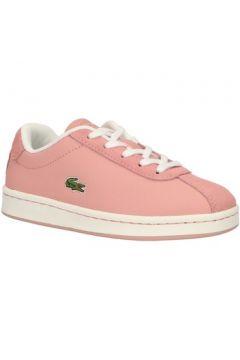 Chaussures enfant Lacoste 37SUC0011 MASTERS(115582403)