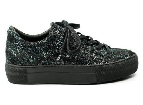 Lage Sneakers Floris Van Bommel DAMES sneaker 85252 zwart(65912641)