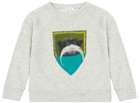 Sweatshirt Ape(113868729)